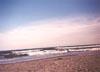 Assateague Beach / Photo by Kate Springle