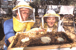 Beekeepers (Photo courtesy National Human Genome Research Institute)