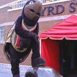 The two Testudos, mascot and sculpture, outside Byrd Stadium, Courtesy University of Maryland Athletic Department